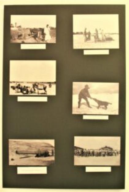 REBECCA PERRIN - FAMILY HISTORY
