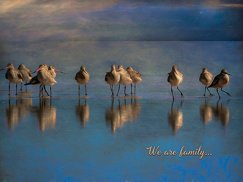 We Are Family Greeting Card Set of Four