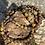 Thumbnail: Bracel'its - Clive set 3p
