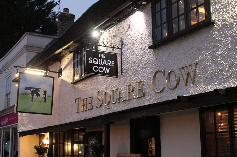 square cow outside edited .jpg