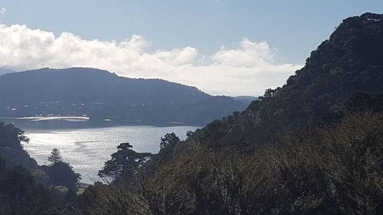 Big Huia Bay shimmers silver on a still winters morning.