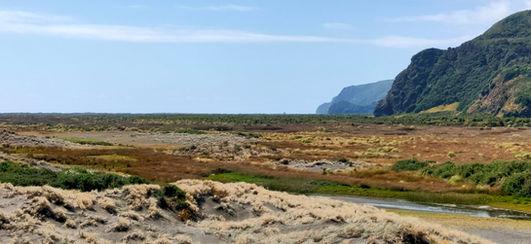 Whatipu lagoon scientific reserve area, looking northwards.