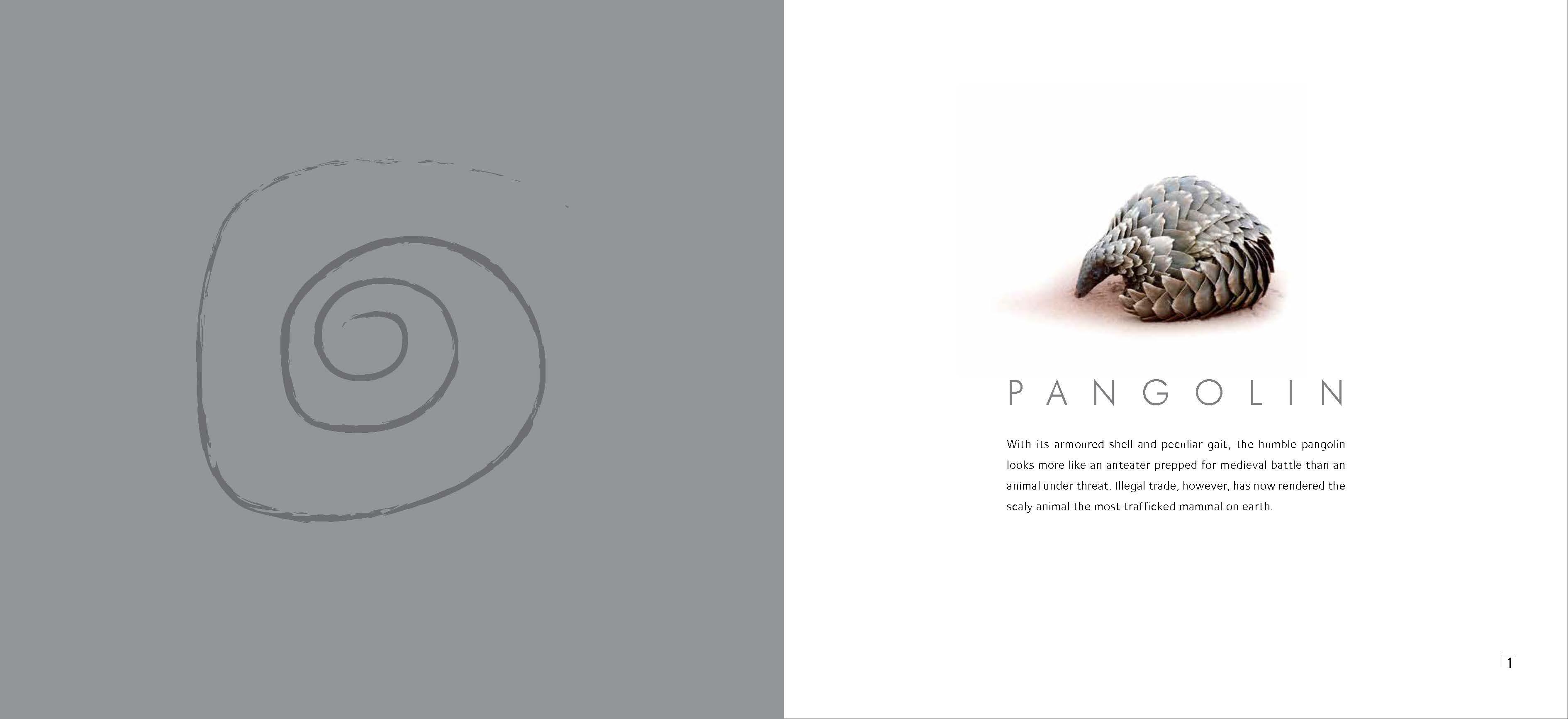 Pangolin (003)_Page_02