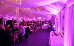 Wedding Disco Basinstoke