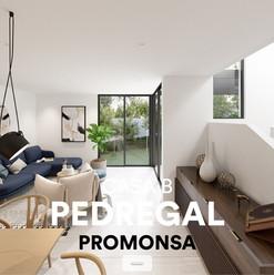 PEDREGAL
