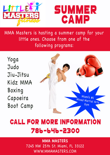 MMA Masters summer camp flyer