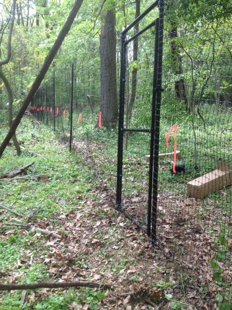 ja-deer-fence-2.jpg