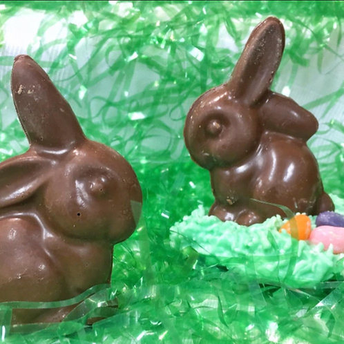 Floppy-eared Bunny