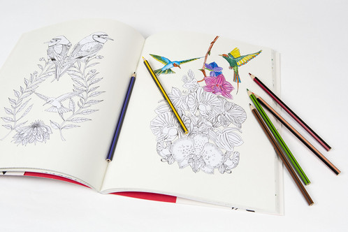 We Know That Coloring Books Have Become Extremely Popular So Wanted To Find A Very Special One For You This Beautiful Book All Ages Is Full