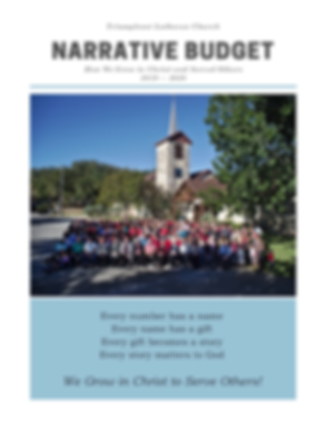 Narrative Budget Cover pic.png