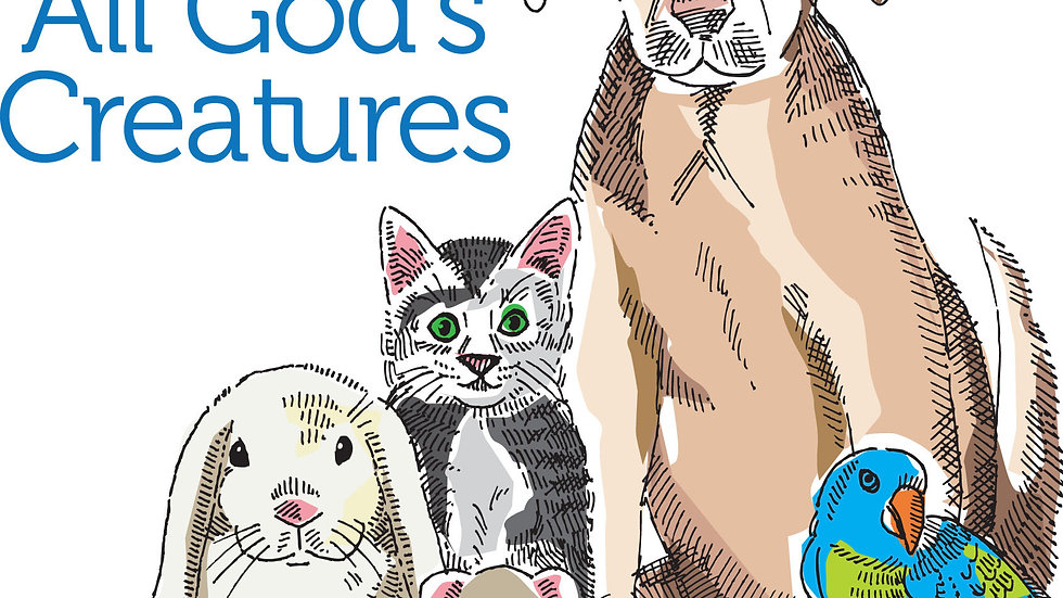 Summer Camp: All About Pets