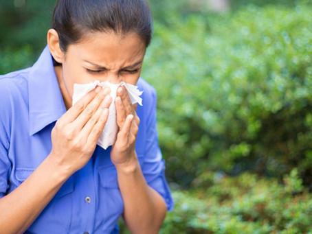 At-choum !!!  Allergies, que faire?