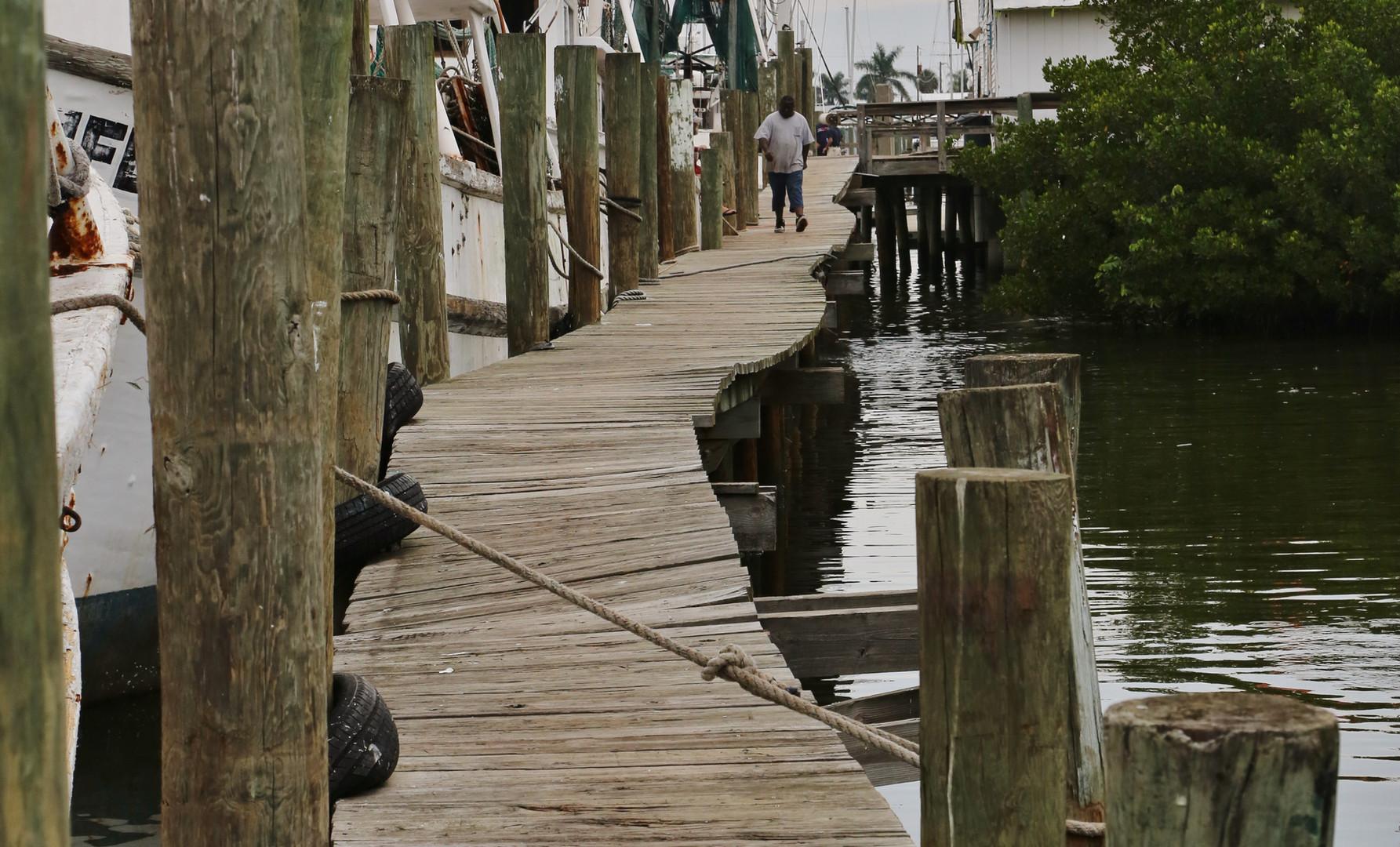Trico's dock