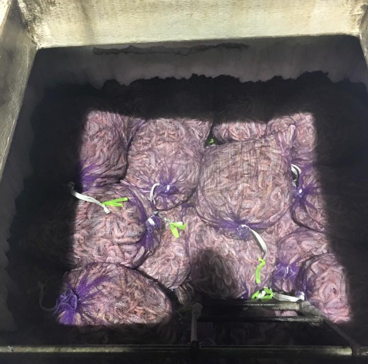 One of our shrimp boats freezers hole filled to the top after a long 30-40 day trip!