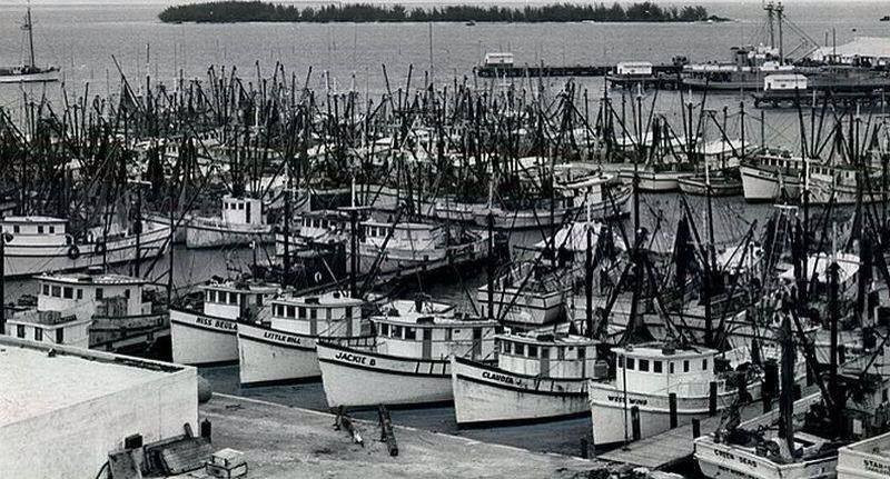 Some Fiberglass boats from back in the day
