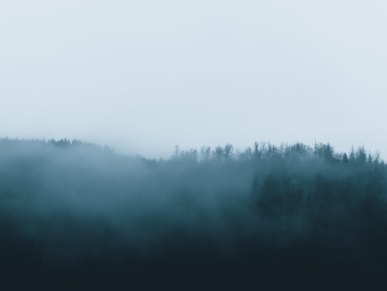 Blue Mist #8
