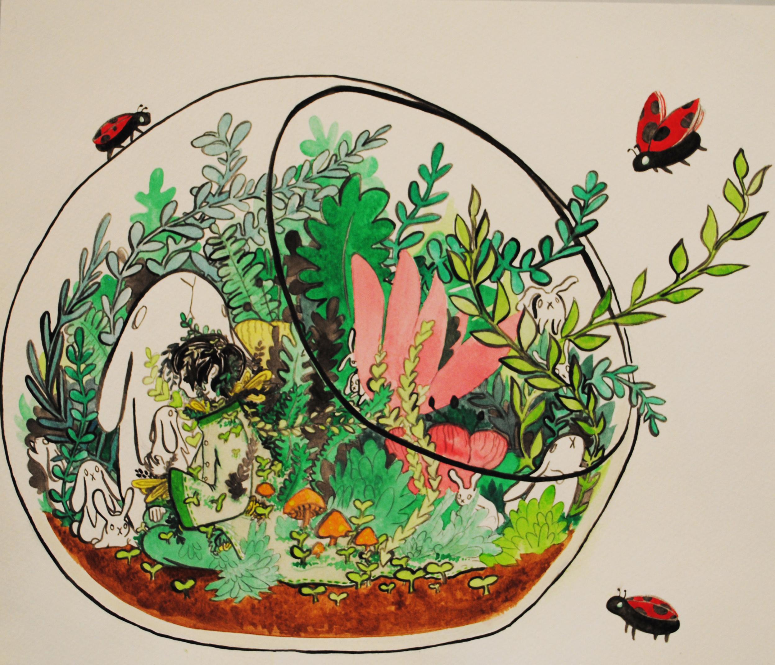 Terrarium Lady Bug