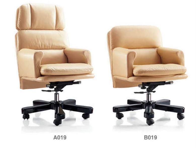 A019+b013
