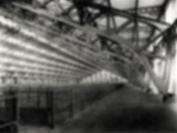 Fig_12___Le_marché_aux_bestiaux_en_1935
