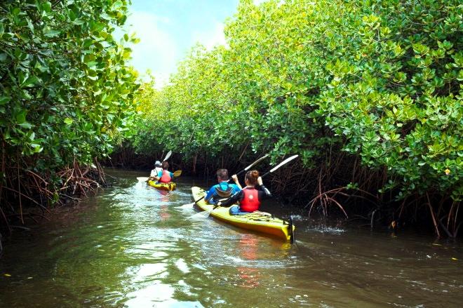 Educational Nature Tours