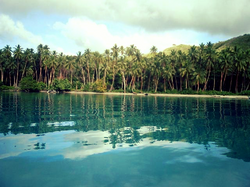 Kayaking & Stand Up Paddleboarding