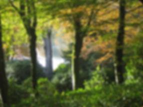 Stourhead Autumn.jpg