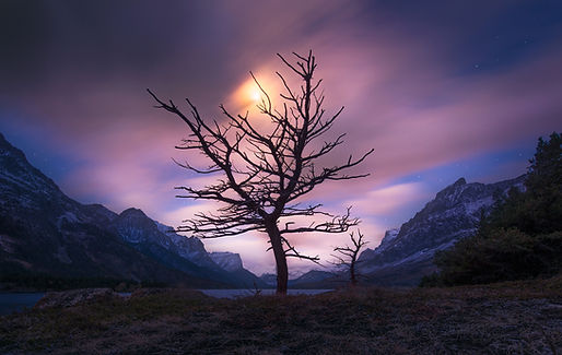 moon-rising-on-a-purple-sky.jpg