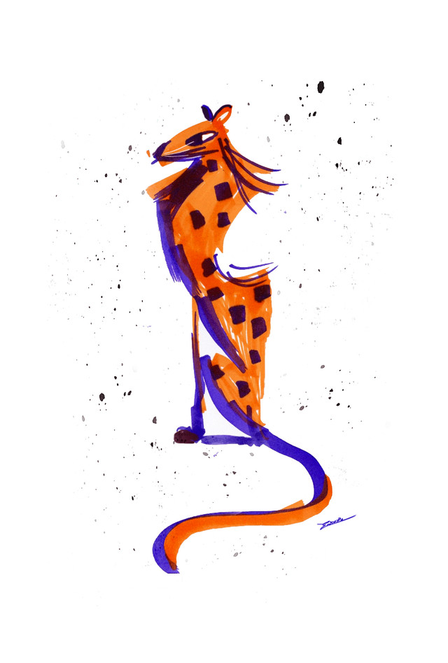 cheetah colour blocking