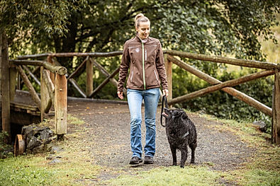 Hundeschule Büdingen Einzelstunde