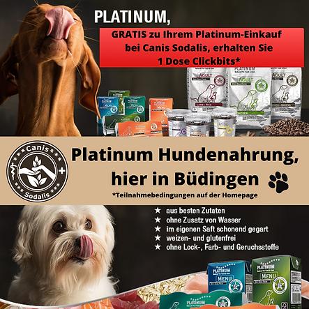 Platinum Werbung.png