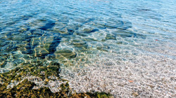 目の前のビーチの透明度は感動