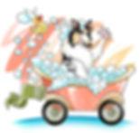 mobileodggrooming.JPG