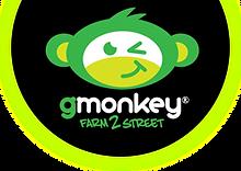 GMonkey.png