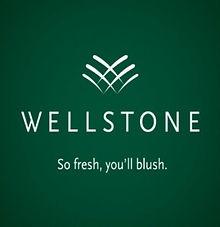 Wellstone_edited.jpg