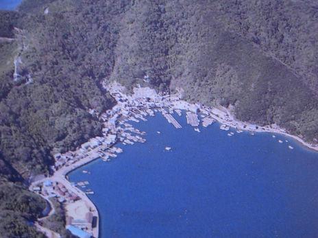 津島町 成地区 航空写真