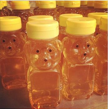 Honey Bear - Net Wt. 12 oz (0.75 lbs)