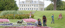 kingston lacy spring header pic