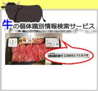 ushi-kotaino.jpg
