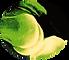 Logo Transparent - Nasseri Clinic.png