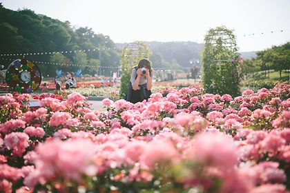 Women taking a photo of flowers