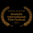 BEST FEATURE FILM (50).png