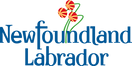 NL Brand Logo Colour.png