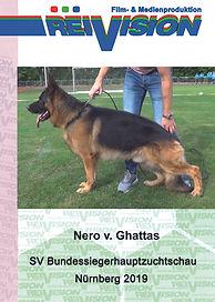 2019_Nero_v._Ghattas, VA7.jpg