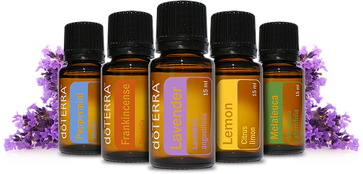 doterra transparent background.png
