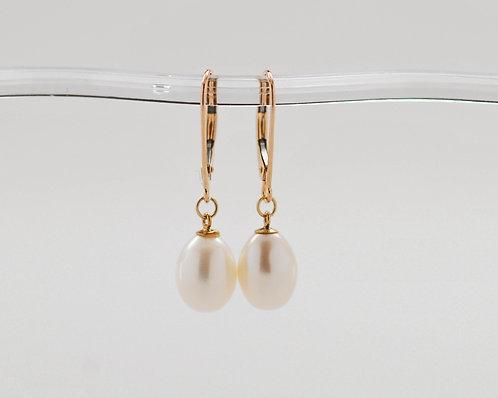 7.5-8mm White Drop Pearl14K Gold Leverback Earrings