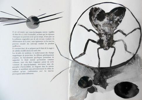 Extrait 3, livre Les Insectes