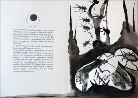 Extrait 1, livre Les Insectes