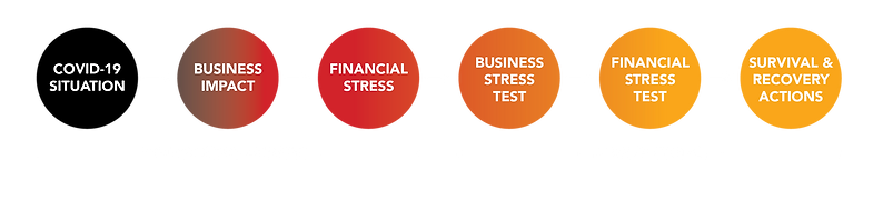 Covid-19 Stress Test Diagram.png