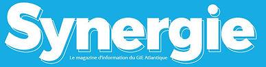 Logo Synergie.JPG