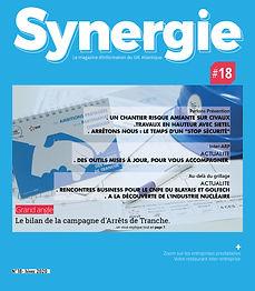 SYNERGIE #18-p1.jpg